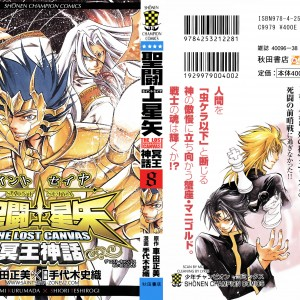 Saint Seiya: The Lost Canvas Vol 08